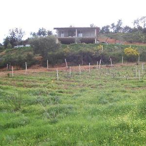 Studio di fattibilità per attivita agri-turistica