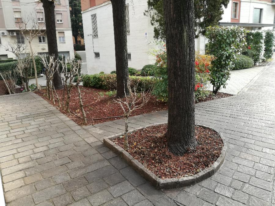 image 3 of Riqualificazione  cortile condominiale